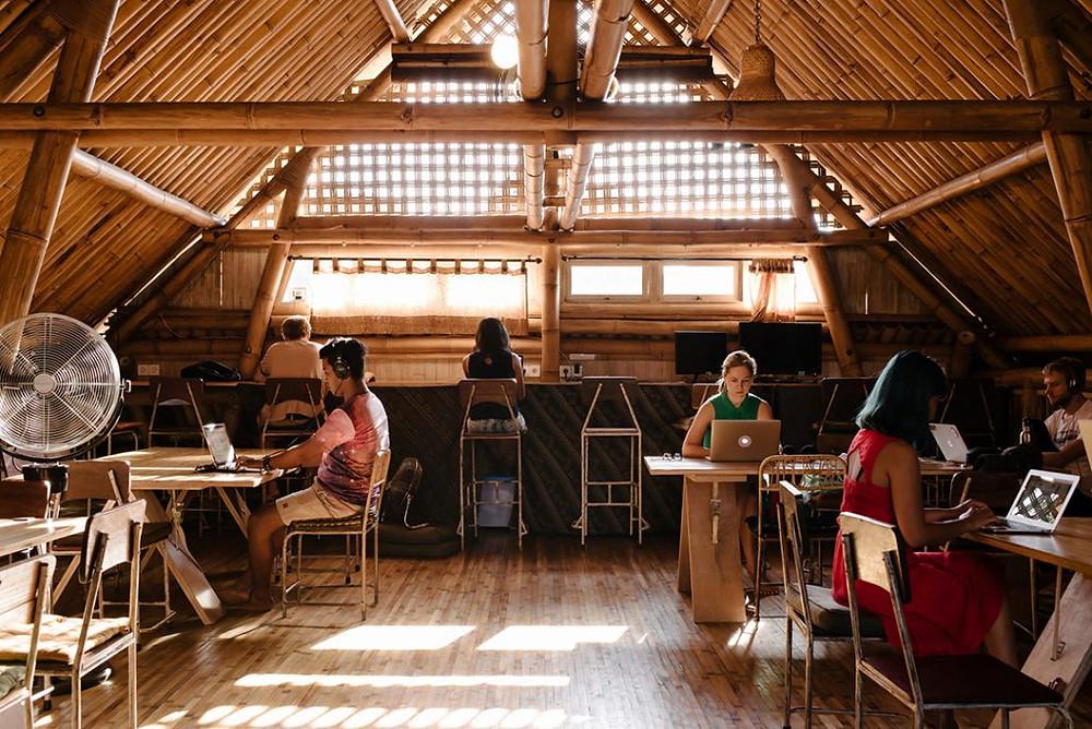 Espace de coworking Bali nature des bureaux en bambou