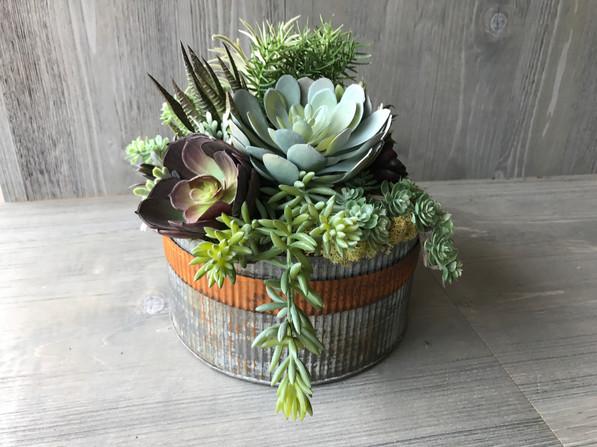 Vintage Tin Succulent Arrangement