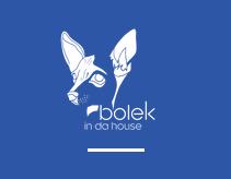 BOLEK IN DA HOUSE