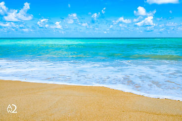 270014-strand-branding-zee-zon.jpg