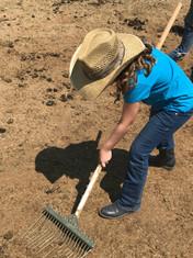 Chores at the Ranch