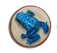 Frog painted in wood