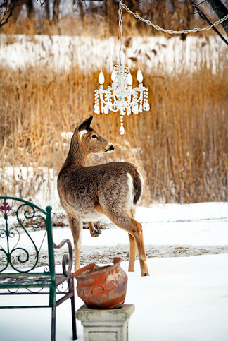 The Deer & The Chandelier 24 x 36 Custom Size Available
