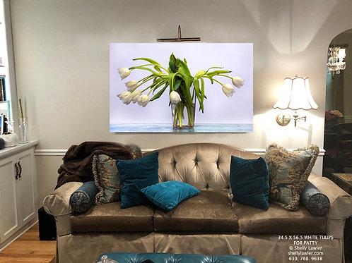 White Tulips 28 x 46