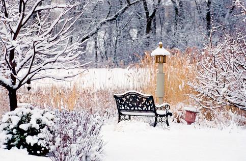 Winter Wonderland 30 x 46 Custom Size Available