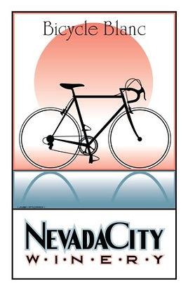teal bike poster.jpg