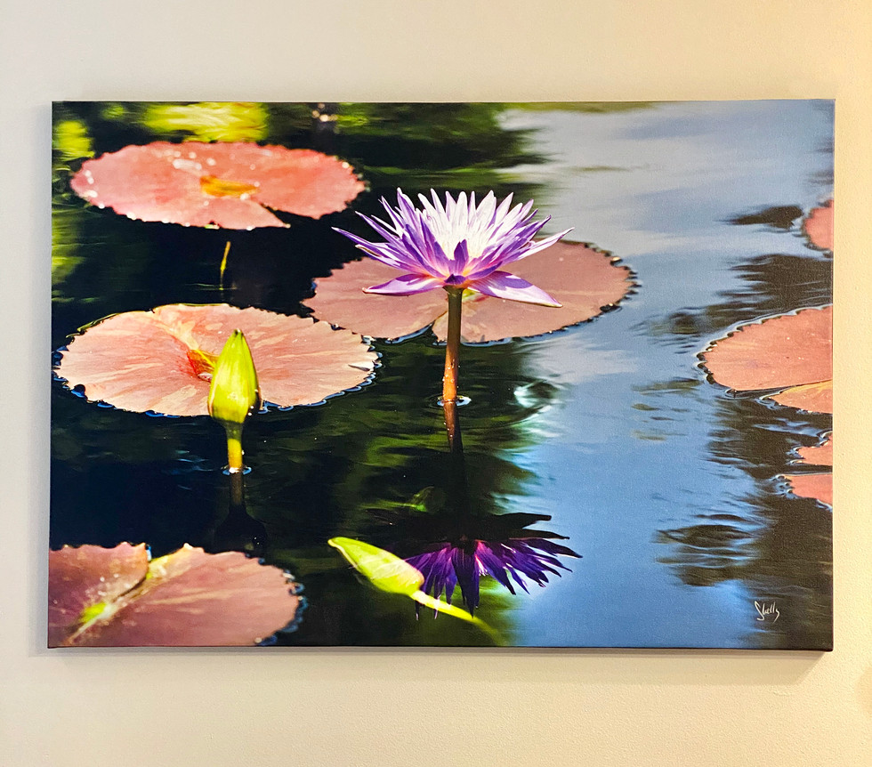 Pathway  Shelly Lawler Original 28 x 40  custom size available