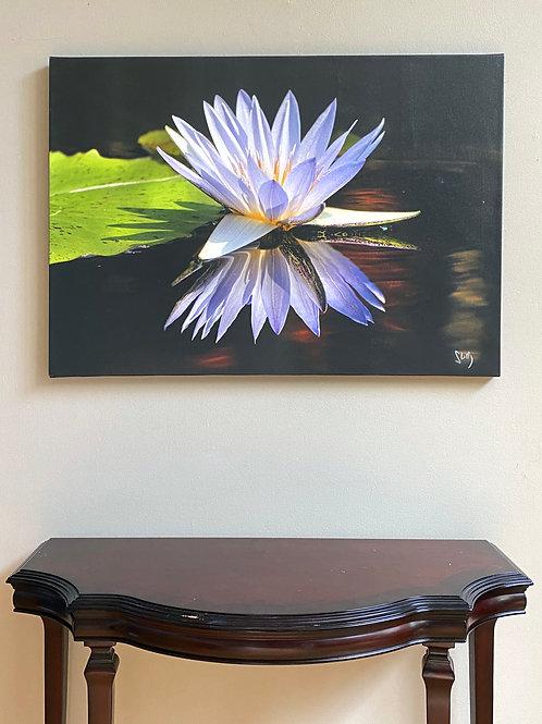 Lotus 40X54 canvas