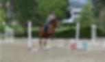 Salto Ostacoli A Cavallo e Percorsi