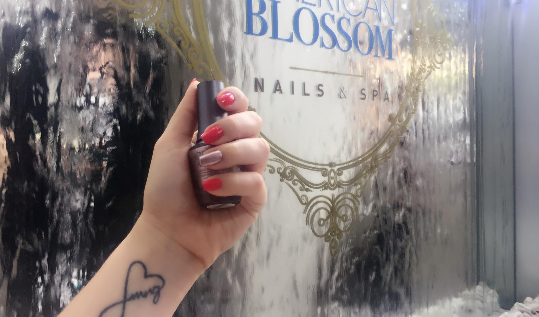 American Blossom