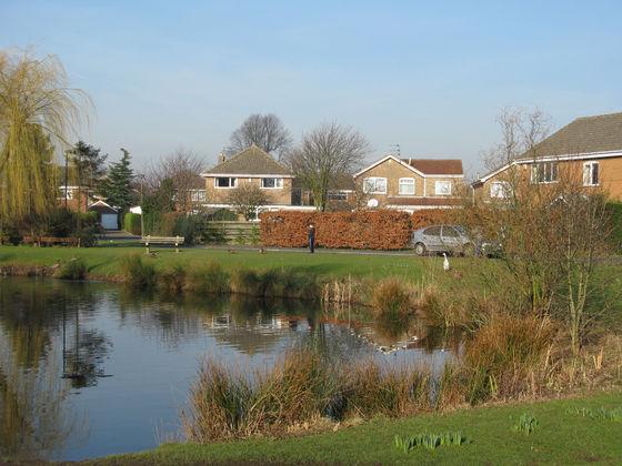 Skelton Village Pond