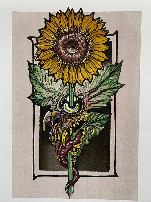 Sinflower