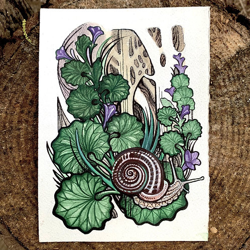 Snail Art Print/Greeting Card