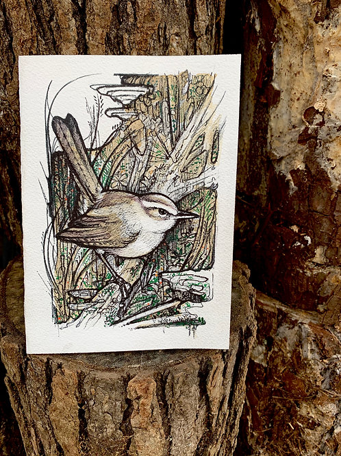 Wren Art Print/Greeting Card
