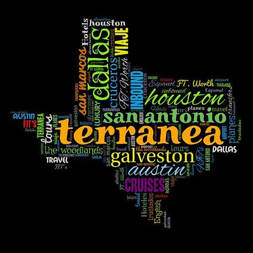 texas word cloud.jpg