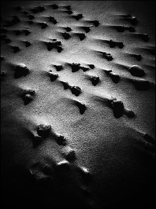 Shifting sands in Black & White