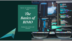 The Basics of BIMO
