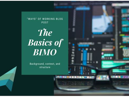 The Basics of BIMO