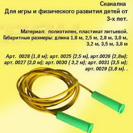 48-039 СКАКАЛКА 3.2 м (Астрон)