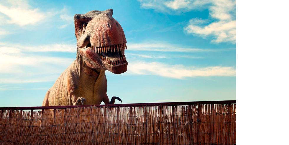 Cabazon Dinosaurs-11.jpg