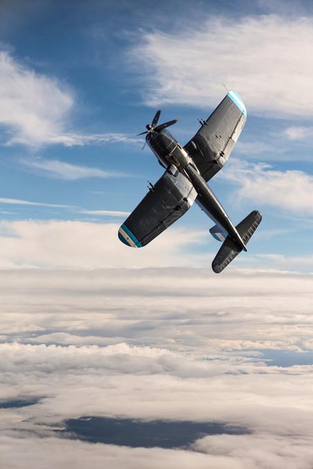 _56A7131 flying copy.jpg