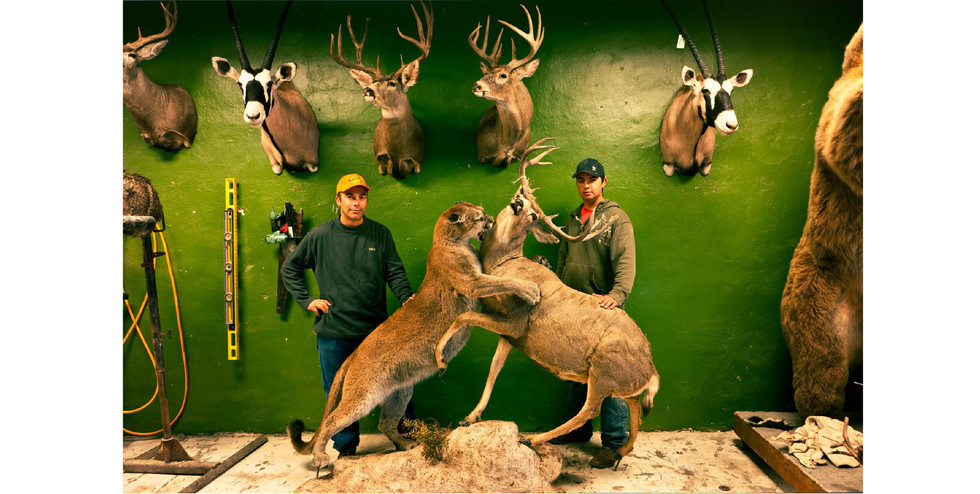 Taxidermists-12.jpg
