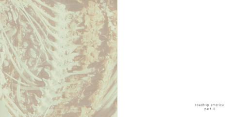 Salton Sea-3.jpg