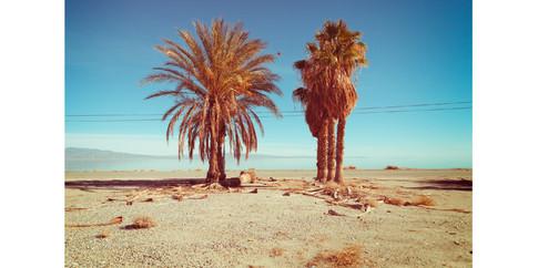 Salton Sea-13.jpg