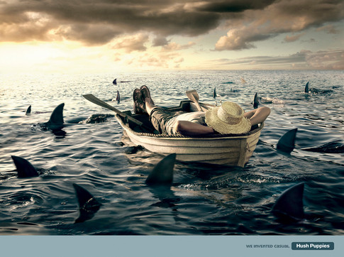 Clarks sharks
