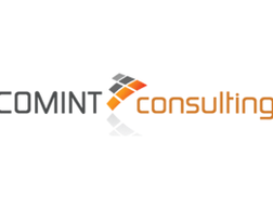 COMINT Consulting LLC