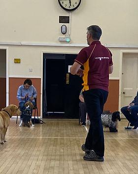 Dog Training Classes