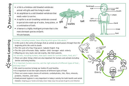 Year 2 Science Knowledge Organiser V2 (1