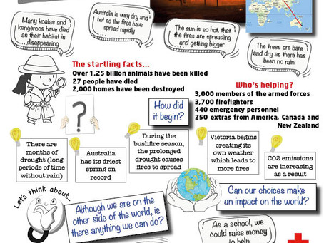 Can we make an impact on the Australian bushfires?