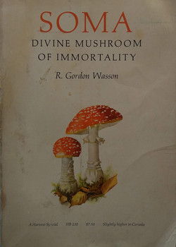 Soma Divine Mushroom of immportality