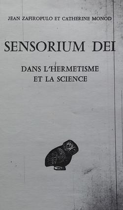 Sensorium dei dans l'hermetisme