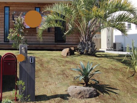 ココスヤシと芝生の庭@横須賀市