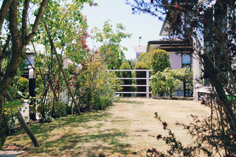 芝生 お庭のリフォーム