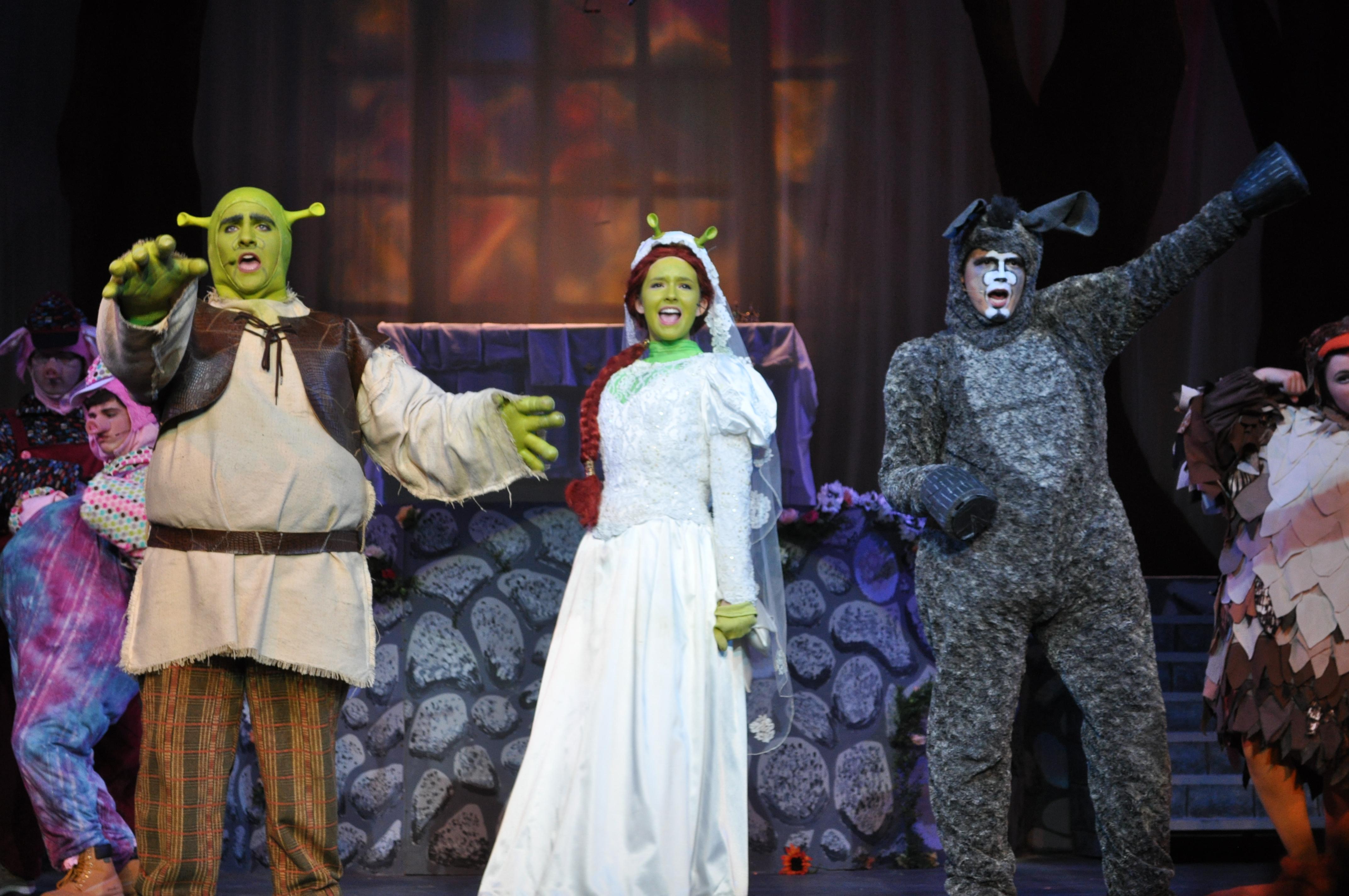 Lindsay Cast As Fiona In Shrek