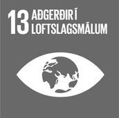 13. Aðgerðir í loftslagsmálum