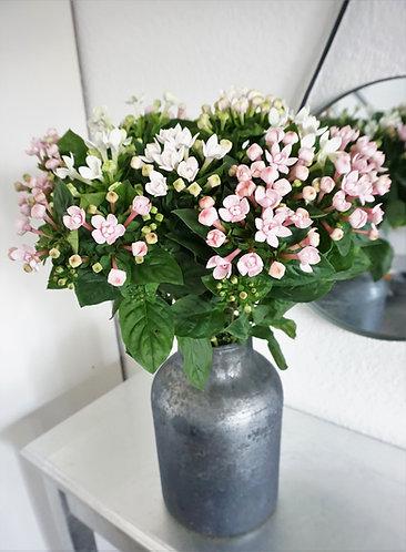 designervase grau, vase schimmern, vase groß silber, blumenvase silber glänzend, ausgefallene vase groß