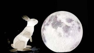 Lunar Lepus