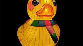 Dizzy Duck