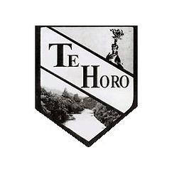 Te Horo School