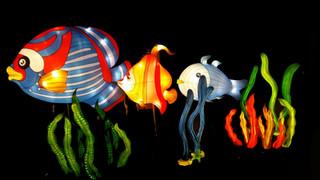 Feature Lanterns