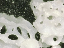 Corticocancellous comes from sections of the illium which are ground into several particulate sizes. The blend of cortical and cancellous that results from this process gives this product the structure of cortical, with the open scaffolding for bone to grow into offered by cancellous.