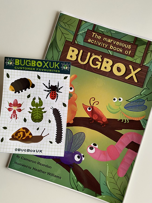 KIDS: Education Book & Sticker Sheet