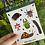 Thumbnail: Bug Box Sticker Sheet