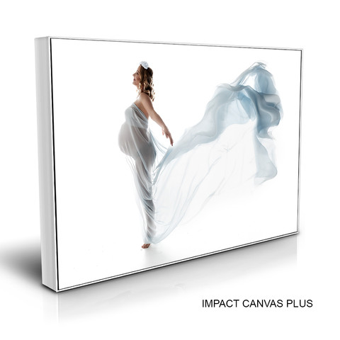 Canvas Plus.jpg