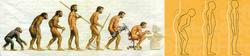 Advance Bio-Structural Chiropractic