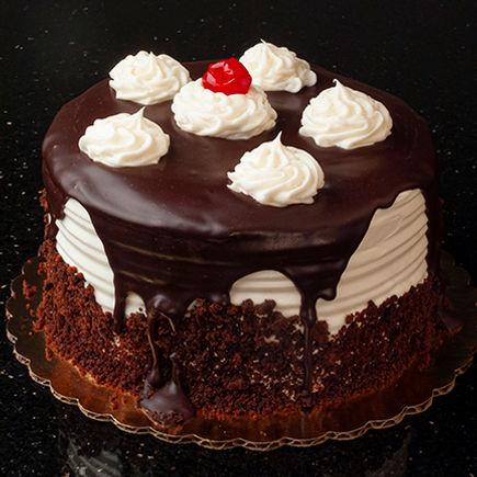 Chocolate Cake 6x6@72dpi-DSCF0062.jpg